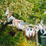 How to…plan your garden party
